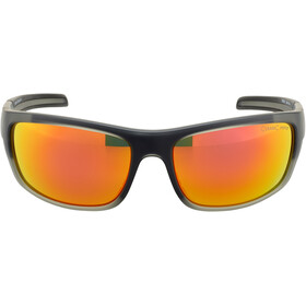 Alpina Testido Gafas, anthracite matt-black